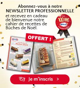 Abonnez-vous à notre newsletter professionnelle et recevez en cadeau de bienvenue notre cahier de recettes de Bûches de Noël